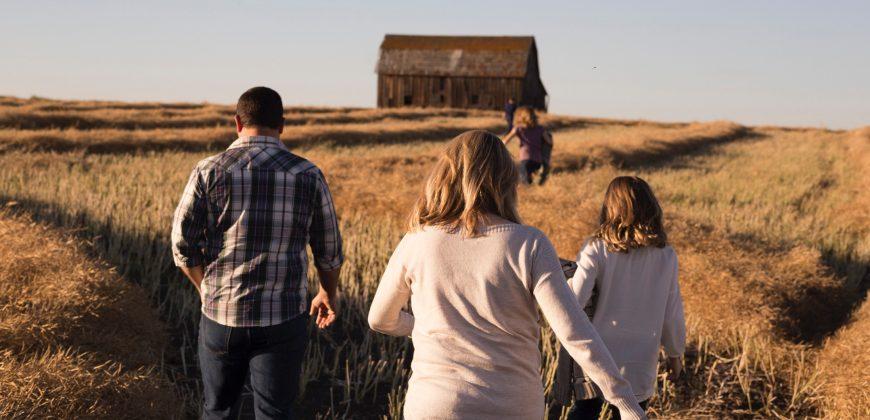 Conflitos – Pais e Filhos